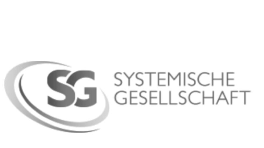 Dreitägiges Intensiv-Coaching, Zertifizierter Coach bei der Systemischen Gesellschaft